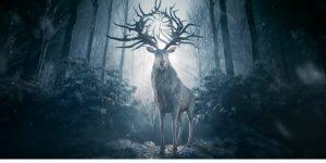 Sombra e Ossos, nova série original da Netflix