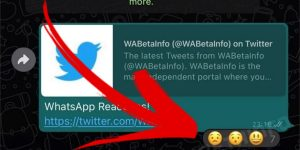 O suposto novo recurso de reações com emojis a mensagens enviadas no WhatsApp (Imagem: Reprodução/WABetaInfo)